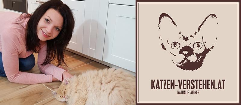 Partner_Katzen